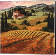 Dawn of a Tuscan Vineyard Fine-Art Print
