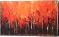 Birch Shoreline Fine-Art Print