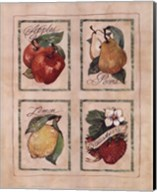 Vintage Fruit Fine-Art Print