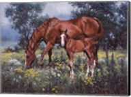 Horse and Foal Fine-Art Print