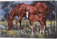 Horse and Foal Fine-Art Print