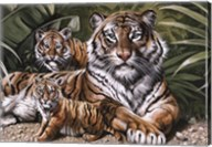 Yellow Tiger With Cubs Fine-Art Print