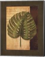 Palm Tropical IV Fine-Art Print