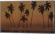 Sunset Palms II - CS Fine-Art Print