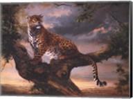 Leopard In Tree Fine-Art Print