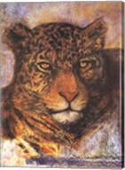 The Leopard Fine-Art Print