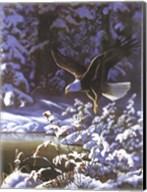 Eagle In Winter Fine-Art Print