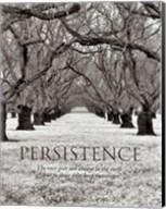 Persistence Fine-Art Print