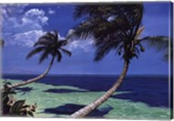 Beckoning Palms Fine-Art Print