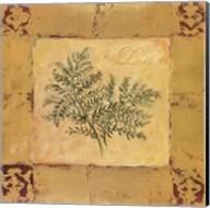 Lady Fern Fine-Art Print