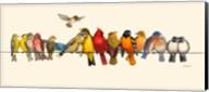 Bird Menagerie I Fine-Art Print