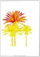 Sunny Palm II Fine-Art Print