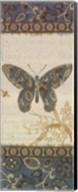 Natures Pattern II Fine-Art Print
