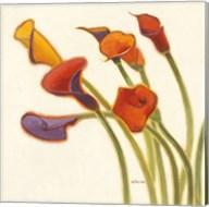 Callas in the Wind II Fine-Art Print