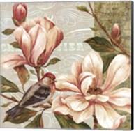 Magnolia Collage II - mini Fine-Art Print