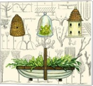 Garden Trug Fine-Art Print