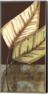 Small Palm Leaf Arabesque II (P) Fine-Art Print