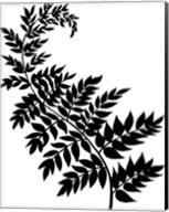 Leaf Silhouette III Fine-Art Print