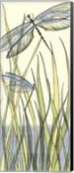 Small Gossamer Dragonflies I (P) Fine-Art Print