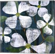 White Magnolia Square Fine-Art Print