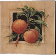 Peach Square Fine-Art Print