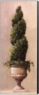 Roman Topiary llI Fine-Art Print