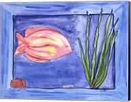 One Fish Fine-Art Print