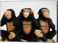 Monkeys - See No Evil, Hear No Evil, Speak No Evil Fine-Art Print