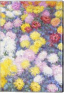 Chrysanthemums, 1897 - vertical Fine-Art Print