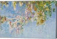 Wisteria - blue Fine-Art Print