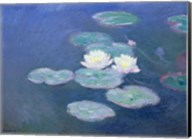 Waterlilies, Evening Fine-Art Print