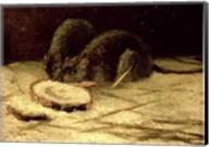Two Rats Fine-Art Print