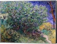 Lilac Bush, 1889 Fine-Art Print