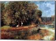 Chestnut Tree in Bloom Fine-Art Print