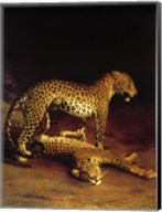 Two Leopards Playing in the Exeter Change Menagerie Fine-Art Print