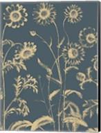 Chrysanthemum 2 Fine-Art Print