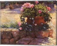Majorcan Patio Pot Fine-Art Print