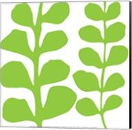 Green Fern on White Fine-Art Print