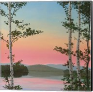 Cooper Sunset Birches Fine-Art Print