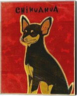 Chihuahua (black and tan) Fine-Art Print