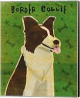 Border Collie Fine-Art Print