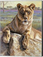 Serengeti Lioness Fine-Art Print