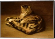 Recumbent Cat, 1898 Fine-Art Print