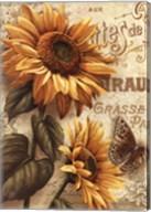 Beauty in Bloom III Fine-Art Print