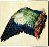 Wing of a Blue Roller, 1512 Fine-Art Print