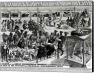 'The Barnum and Bailey Greatest Show On Earth' Curious Animals Fine-Art Print