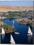Feluccas on the Nile River, Aswan, Egypt Fine-Art Print