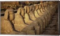 Avenue of the Sphinxes Karnak Temple Luxor Egypt Fine-Art Print