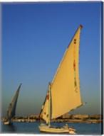Sailboats sailing in a river, Nile River, Luxor, Egypt Fine-Art Print