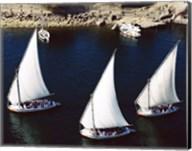 Sailboats in a river, Nile River, Aswan, Egypt Fine-Art Print